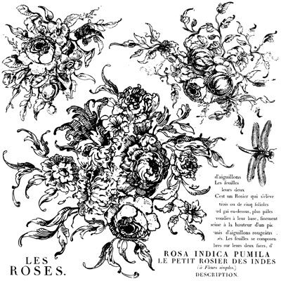 Rose Toile Decor Stamp Iron Orchid Design
