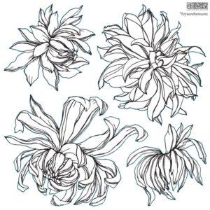 Chrysanthemum Iron orchid Designs Stamp